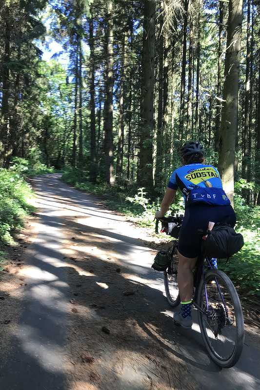 Scuderia Suedstadt Bikepacking in the forrest
